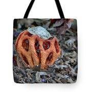 Latticed Stinkhorn Tote Bag