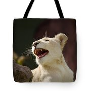 Laughing Lioness Tote Bag