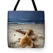 Laughing With A Mouth Full Of Sand Tote Bag