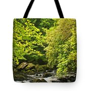 Lauragh River West Cork Tote Bag