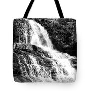 Laurel Falls Smoky Mountains 2 Bw Tote Bag