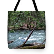 Laurel Hill Creek Hemlock Overlook Tote Bag