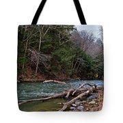 Laurel Hill Creek Tote Bag