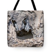 Lava Shapes Tote Bag