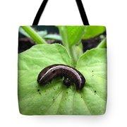 Lavender And Cream Tote Bag