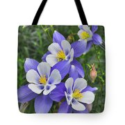 Lavender And White Star Flowers Tote Bag