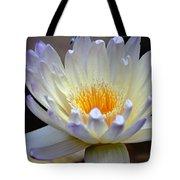Lavender Edged Lotus Tote Bag