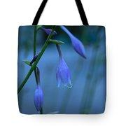Lavender Evening Tote Bag