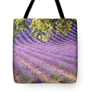 Lavender Field In France Tote Bag