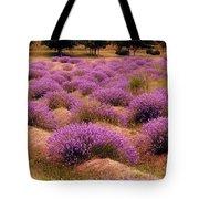 Lavender Fields 2 Tote Bag