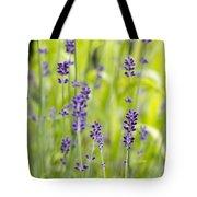 Lavender Flowers Background Tote Bag