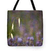 Lavender, France Tote Bag