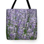 Lavender Hues Tote Bag