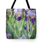 Lavender Iris Group Tote Bag