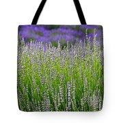 Lavender Layers Tote Bag