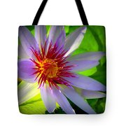 Lavender Passion Tote Bag by Karen Wiles