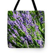 Lavender Square Tote Bag