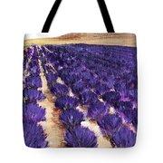 Lavender Study - Marignac-en-diois Tote Bag
