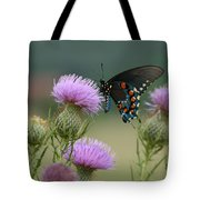 Lavender Thistle And Pipevine Swallowtail Butterfly Tote Bag
