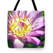 Lavillita Flower 10117 Tote Bag
