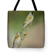 Lawrence Goldfinch Pair On Branch Tote Bag