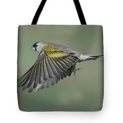 Lawrences Goldfinch Tote Bag