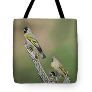 Lawrences Goldfinch Pair Perched Tote Bag