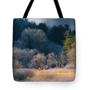 Layered Beauty Tote Bag
