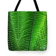 Layered Ferns I Tote Bag