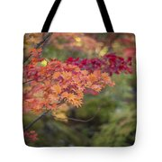 Layers Of Autumn Red Tote Bag