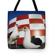 Laysan Albatross Pair Nesting Midway Tote Bag