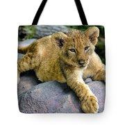 Lazy Cub Tote Bag