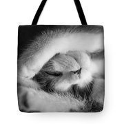 Lazy Day Bw Tote Bag