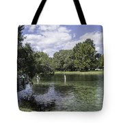 Lazy Day On The Rainbow River Tote Bag