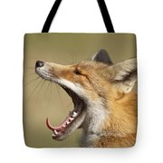 Lazy Fox Tote Bag