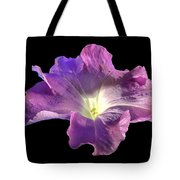 Lazy Petunia Tote Bag