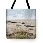 Lazy Seals Tote Bag