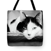 Le Cat Tote Bag by Andee Design