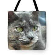 Le Petit Chat Tote Bag