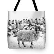 Leader Of The Flock Tote Bag