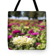 Leader Of The Patch Tote Bag