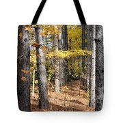 Leading To Autumn Tote Bag