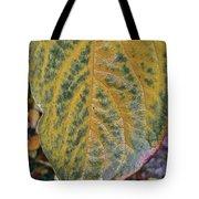 Leaf After Rain Tote Bag