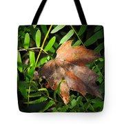 Leaf Among Ferns Tote Bag