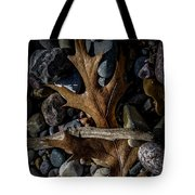 Leaf And Stones Tote Bag