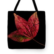 Leaf And Tree Tote Bag
