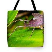 Leaf Katydid Tote Bag