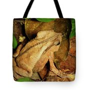 Leaf Litter Toad Bufo Typhonius Tote Bag