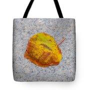 Leaf On Granite 6 - Square Tote Bag