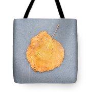 Leaf On Granite 9 - Square Tote Bag